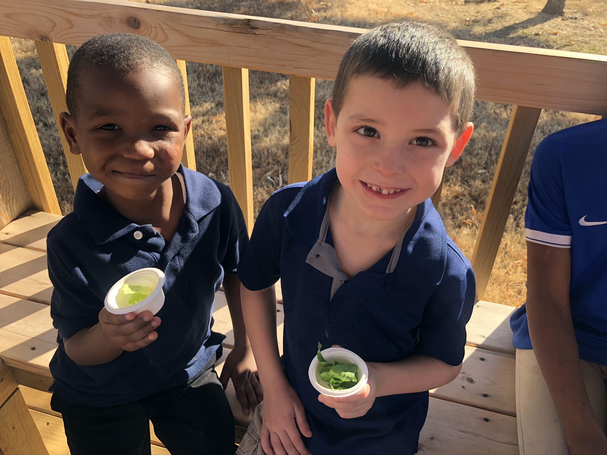 Kindergarten students at Bodine enjoy a taste of the lettuce they grew in their garden.