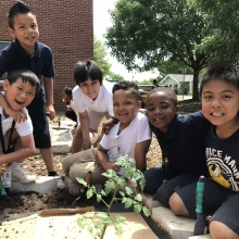 Planting with students at Horace Mann