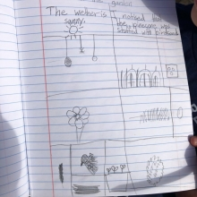 Science journals are a natural feature of garden-based learning.