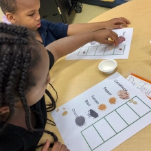 Kindergarten students practice organizing and sorting while exploring garden seeds.